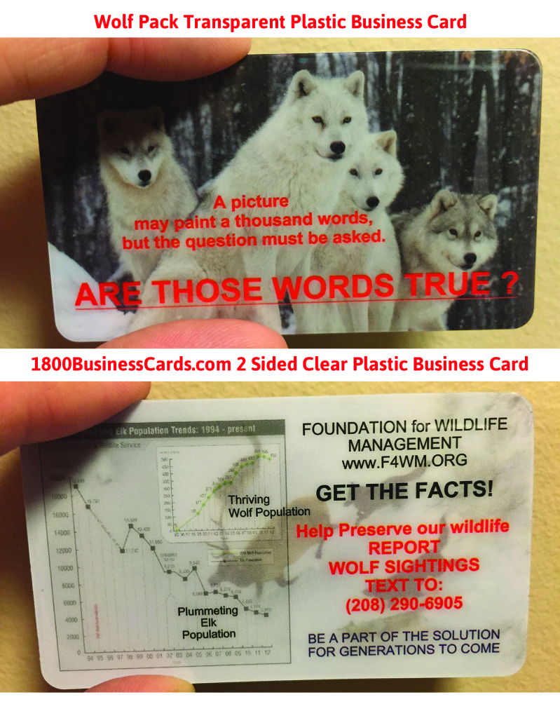 Wolf Pack Plastic Business Card